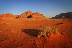 Morgen im Wadi-Rum stockbild