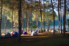 Morgen in kampierendem Park stockbild