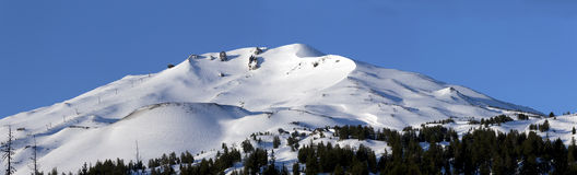 Morgen an Mt Junggeselle, Oregon lizenzfreie stockfotografie