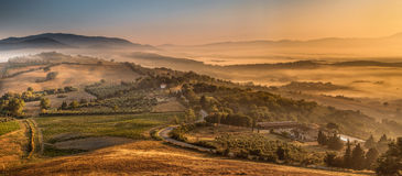 Morgen-Nebel über toskanischem Land, Italien Lizenzfreie Stockfotografie