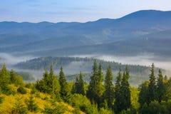 Morgen-Nebel in einem bewaldeten Tal stockfotografie