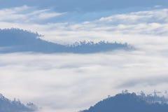 Morgen-Nebel und Nebel, die sich langsam vom Standpunkt im Sonnenaufgang am hohen Berg in Chiangmai, Thailand bewegen Lizenzfreie Stockfotografie