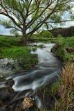 Morgen nebelige Dämmerung nahe einem malerischen Fluss Lizenzfreies Stockfoto