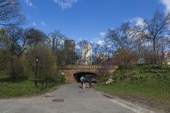 Morgen in New York Central Park Lizenzfreie Stockbilder