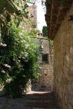 Morgen in Provence Lizenzfreie Stockfotografie
