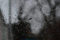 Morgen-Regen lizenzfreie stockbilder
