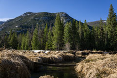 Morgen in Rocky Mountain National Park Stockfoto