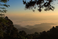 Morgen sehen Nebel bei Huai Nam Dang Lizenzfreie Stockfotos