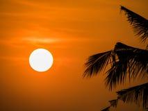 Morgen Sun Stockbild