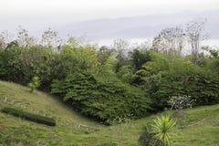 Morgenberge und Natur Nan, Thailand Stockfoto