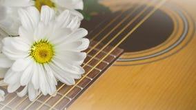 Morgenentspannung und gemütliches mit weißem Gänseblümchen auf Gitarre für ländliches Stockfotos