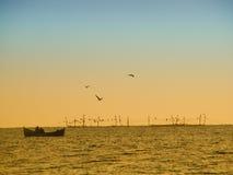 Morgenfischen Stockfoto