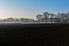 Morgenfrühlingslandschaft mit eben gepflogenem Feld, Ackerland in den Niederlanden, Europa stockfotografie