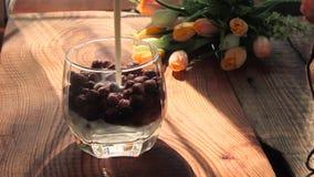 Morgenfrühstücksjoghurt oder -milch wird in Schokoladenkakaoflocken in einer hellen Morgensonne der transparenten Glasschale gego stock footage
