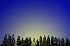 Morgenglühen Stockbild
