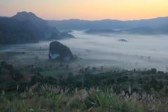 Morgenhimmel und -nebel stockfotos