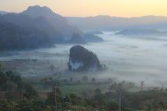 Morgenhimmel und -nebel lizenzfreies stockfoto