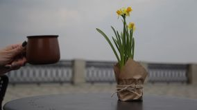 Morgenkaffee auf dem Tisch mit einem Blumenstrau? von Narzissen in einem offenen Caf? Leute leiten einen unscharfen Hintergrund w stock video