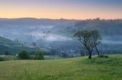 Morgenlandschaft in der Landschaft Lizenzfreie Stockfotografie