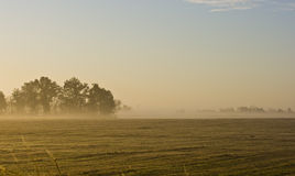 Morgenlandschaft des Missouri-Bauernhoffeldes Lizenzfreie Stockfotos