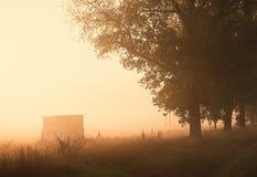 Morgenlichter Lizenzfreies Stockfoto