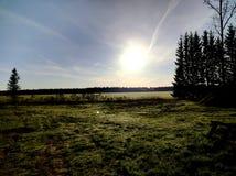 Morgennatur Lizenzfreies Stockbild