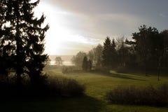 Morgennebel Stockbild