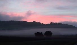 Morgennebel Stockbilder
