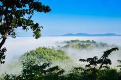 Morgennebel auf dem Berg, nebelig im Winter stockbild