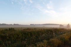 Morgennebel auf einem neuen geernteten Feld Lizenzfreies Stockfoto
