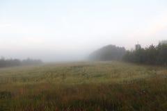 Morgennebel auf einem neuen geernteten Feld Lizenzfreie Stockbilder