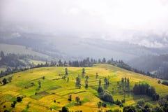 Morgennebel in den Karpatenbergen, schöne Landschaft lizenzfreie stockfotos