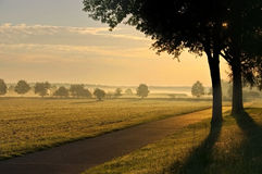 Morgennebel in einem rular Bereich Stockbild