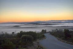 Morgennebel im Busch. Lizenzfreie Stockfotos