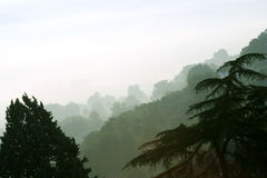 Morgennebel in ländlichem Italien. Ponzano Romano Stockfoto