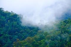 Morgennebel mit Gebirgszug und Bäumen Lizenzfreie Stockfotografie