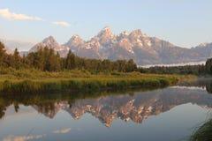 Morgenreflexion des großartigen Tetons stockfotos