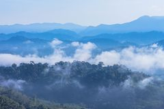 Morgens ist das kühle Wetter machen sich hin- und herbewegenden Nebel auf dem Berg als Meer des Nebels Stockbilder