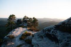 Morgenschönheit Stockfoto