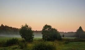 Morgenskizzen der Sommerlandschaft Lizenzfreies Stockfoto