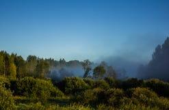 Morgenskizzen der Sommerlandschaft Stockfoto