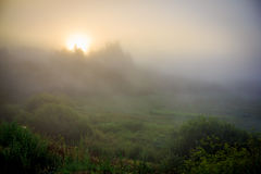 Morgenskizzen der Sommerlandschaft Lizenzfreie Stockfotografie