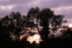 Morgensonnenaufgang über Waipa-Fluss in Neuseeland lizenzfreie stockbilder