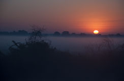 Morgensonnenaufgang Lizenzfreies Stockfoto