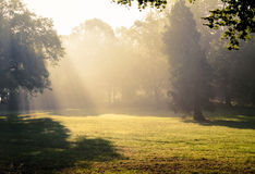 Morgensonnenlichtfälle. Lizenzfreies Stockbild