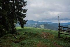 Morgentaunebel-Sonnenstrahlen in den Bergen Lizenzfreies Stockfoto