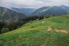 Morgentaunebel-Sonnenstrahlen in den Bergen lizenzfreies stockbild