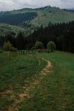Morgentaunebel-Sonnenstrahlen in den Bergen stockfotografie