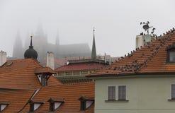 Morgentram Stockbilder