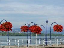 Morges, Suiza Floreros de flores rojas en la ciudad en el lago GE foto de archivo libre de regalías